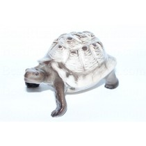 Sculpture Turtle Light Shell