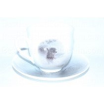 Cup and saucer pic. Hedgehog in the Fog - Horse, Form Lily of the valley