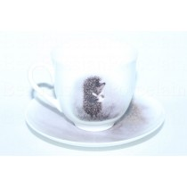 Cup and Saucer pic. Hedgehog in the Fog, Owl Form Lily of the valley